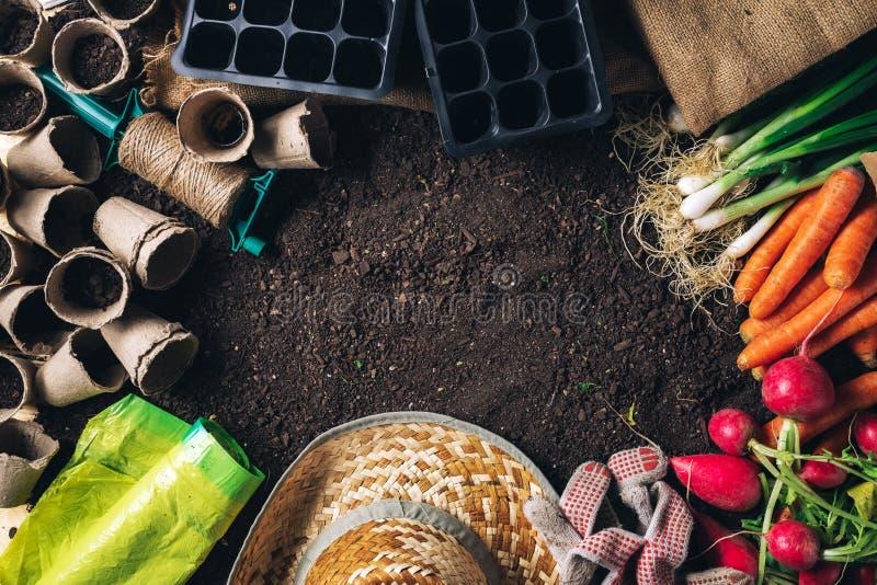 Organisch inlands opbrengst en het tuinieren materiaal met exemplaarruimte stock fotografie