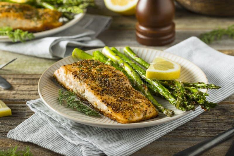 Organisch Pan Seared Salmon stock foto