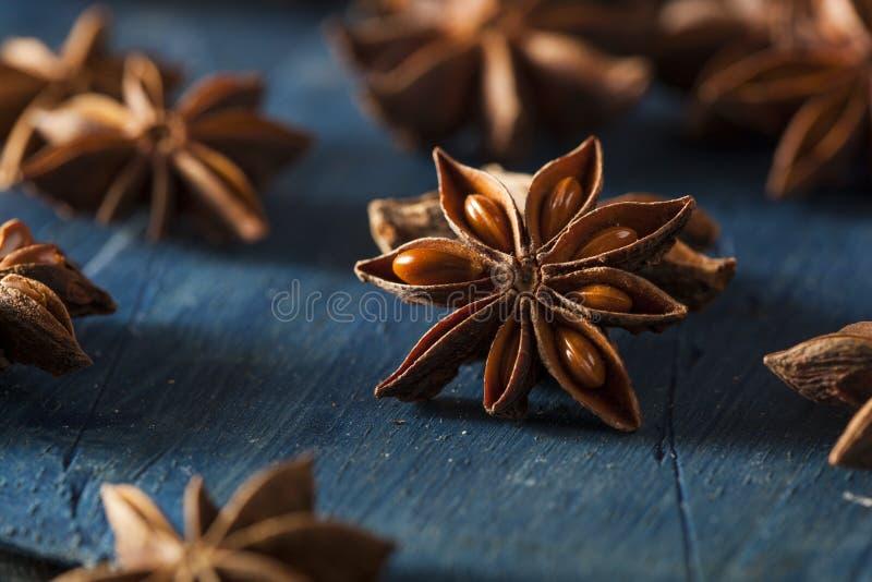 Organisch trocknen Sie Stern des Anises stockfoto