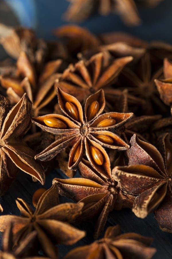 Organisch trocknen Sie Stern des Anises stockbilder