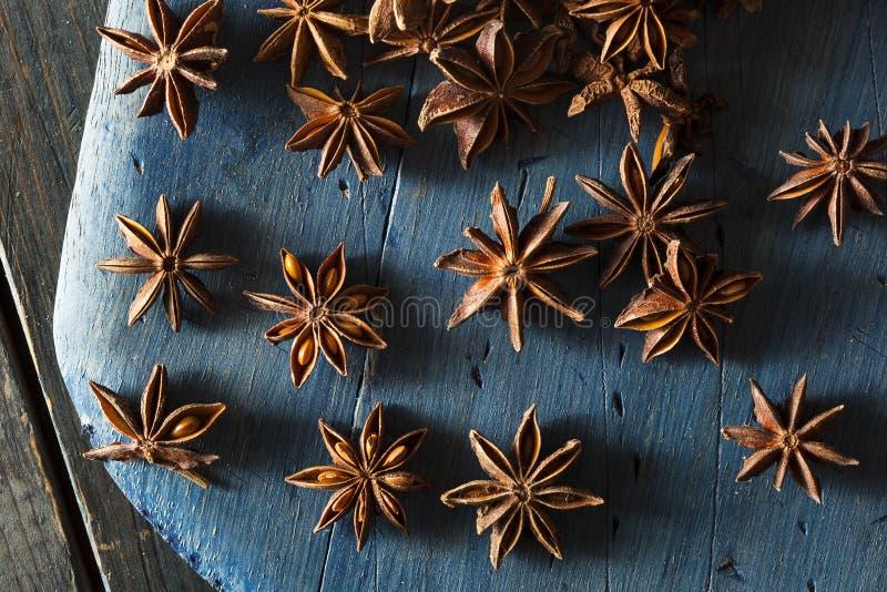 Organisch trocknen Sie Stern des Anises stockfotografie