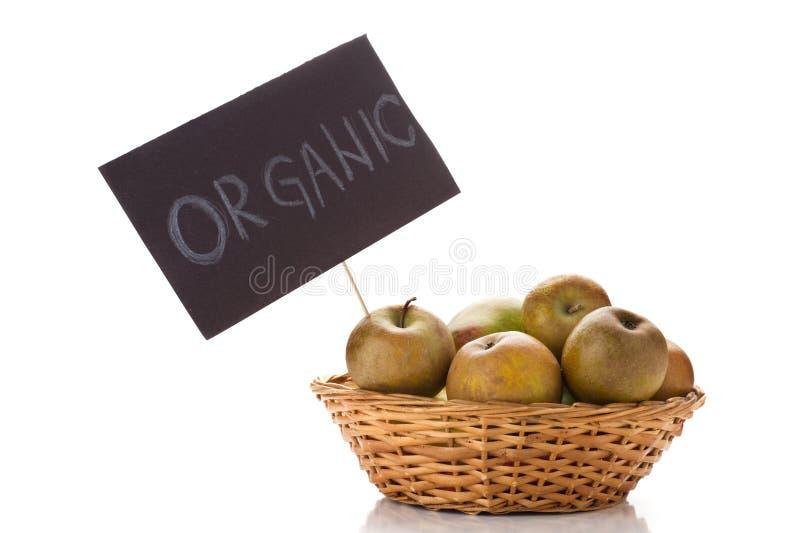 Organische Äpfel stockfoto