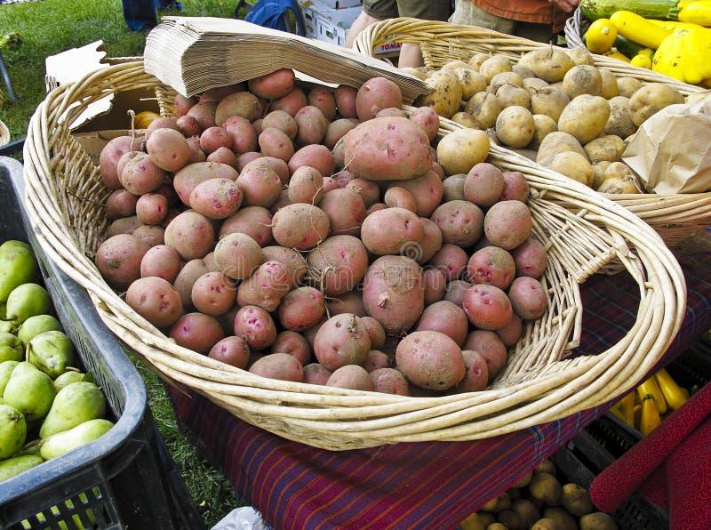Organische aardappels bij de Markt van Landbouwers royalty-vrije stock foto