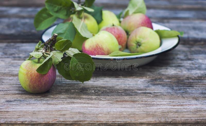 Organische appelen op houten lijst royalty-vrije stock afbeeldingen