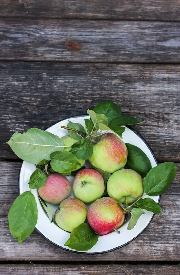 Organische appelen op houten lijst royalty-vrije stock foto's