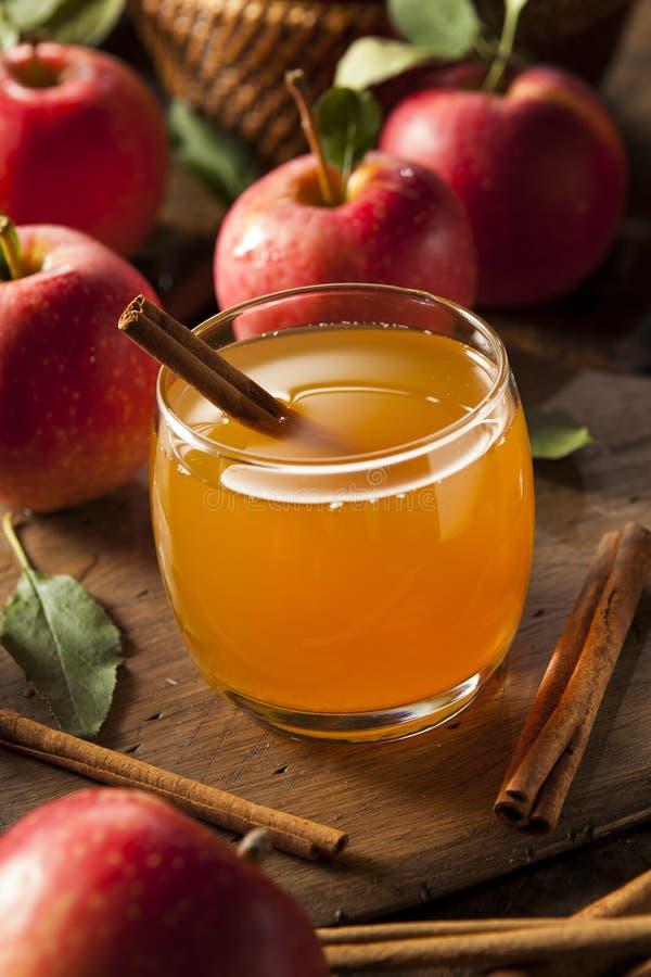 Organische Apple-Cider met Kaneel royalty-vrije stock afbeelding