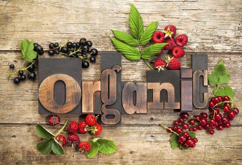 Organische bessen stock foto