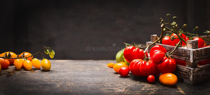 Organische bunte Tomaten im Weinlesekasten auf rustikaler Tabelle über dunklem hölzernem Hintergrund, Fahne lizenzfreie stockbilder