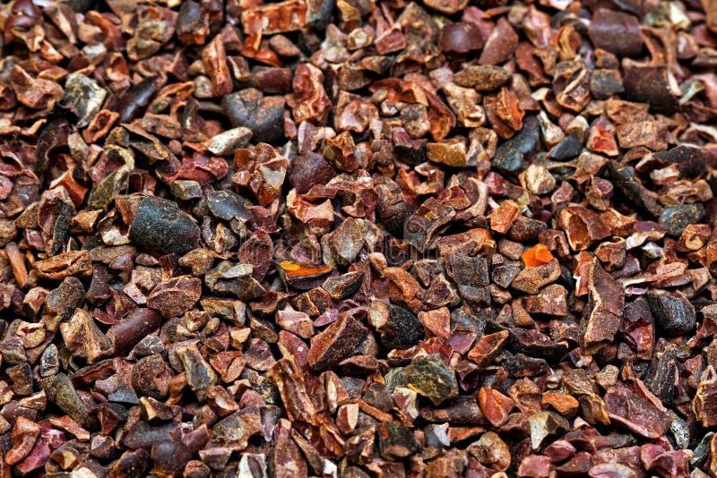 Organische cacaobonen stock afbeeldingen