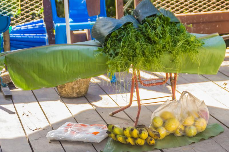Organische Chayote groene spruiten voor verkoop in de lokale markt Chayote (Sechium edule) is een eetbare installatie die ook gek stock fotografie