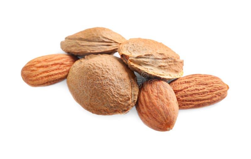 Organische droge abrikozenpitten op wit royalty-vrije stock fotografie
