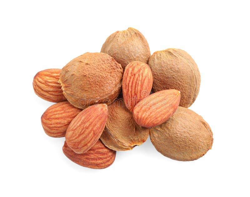 Organische droge abrikozenpitten op witte achtergrond, royalty-vrije stock afbeelding