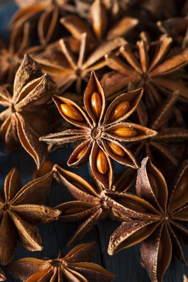 Organische Droge Ster van Anijsplant royalty-vrije stock afbeelding