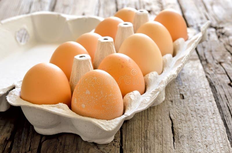Organische Eier lizenzfreies stockbild