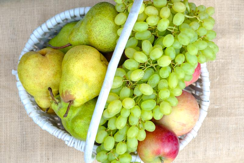 Organische frische Frucht in einem weißen Weidenkorb Äpfel, Birnen, Trauben, Pfirsiche, Pflaumen stockbild