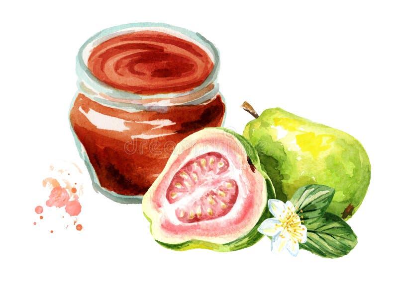 Organische Fruchtmarmelade Glasgefäß Guavenmarmelade und frische Frucht lokalisiert auf weißem Hintergrund Gezeichnete Illustrati lizenzfreie abbildung