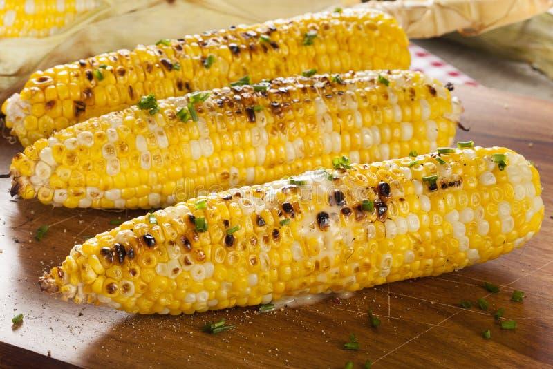 Organische gegrillte Maiskörner lizenzfreies stockfoto