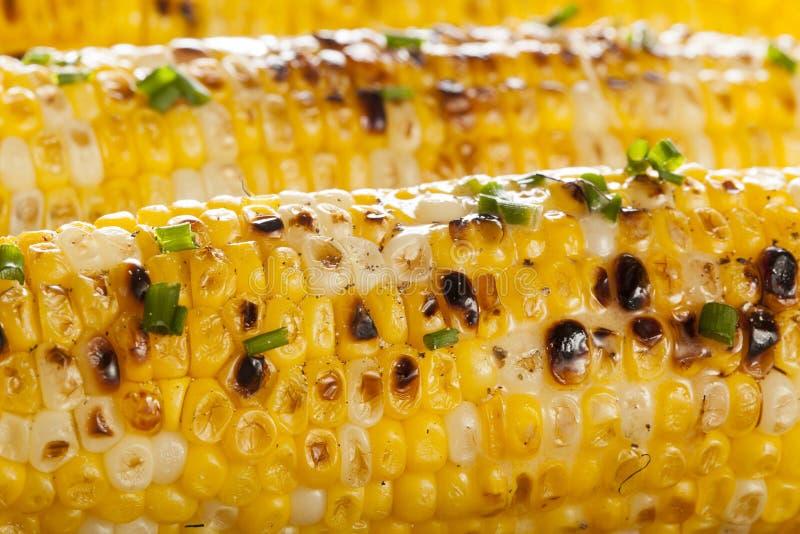 Organische gegrillte Maiskörner lizenzfreies stockbild