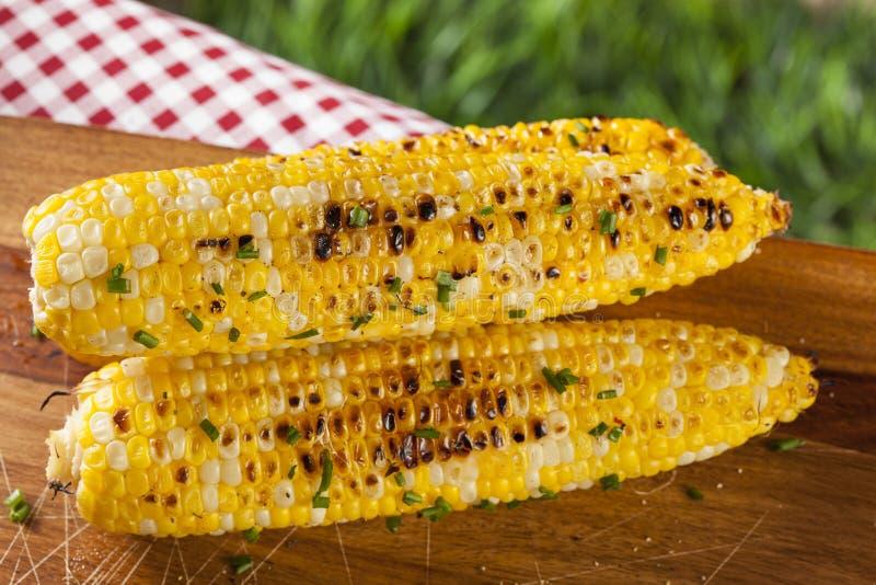 Organische gegrillte Maiskörner stockbild