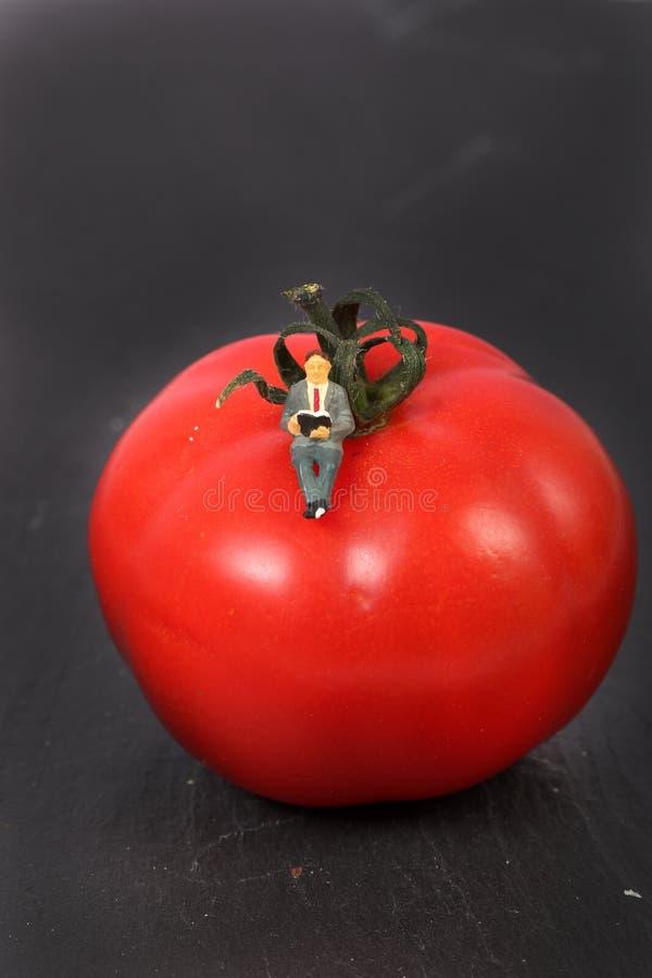 Organische Gemüsestudie stockbild
