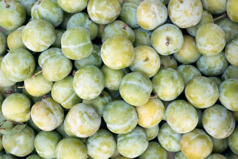 Organische grüne Pflaume auf Landwirtmarkt lizenzfreies stockfoto