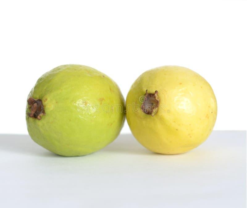 Organische Guaven stockfotografie