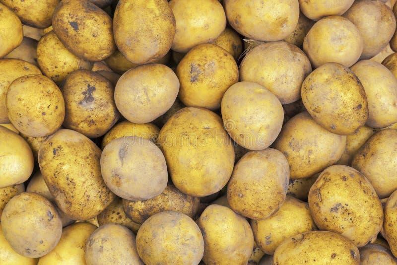 Organische Kartoffeln gestapelt stockfotografie