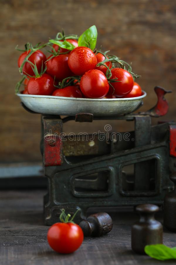 Organische Kirschtomaten stockbilder