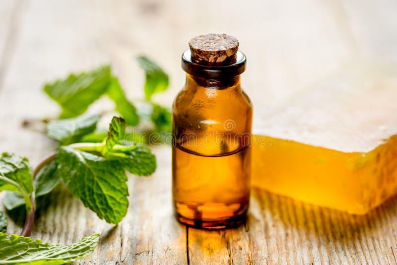Organische Kosmetik mit Kräuterauszügen der Minze auf hölzernem Hintergrund lizenzfreies stockfoto