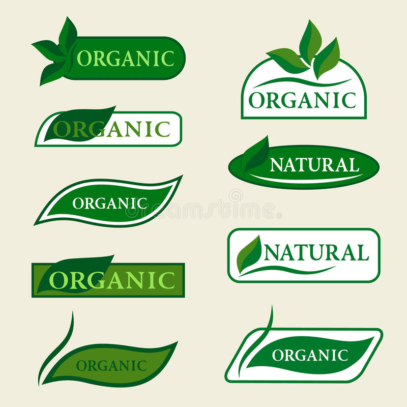 Organische natürliche Logodesignschablone unterzeichnet mit grünen Blättern stock abbildung