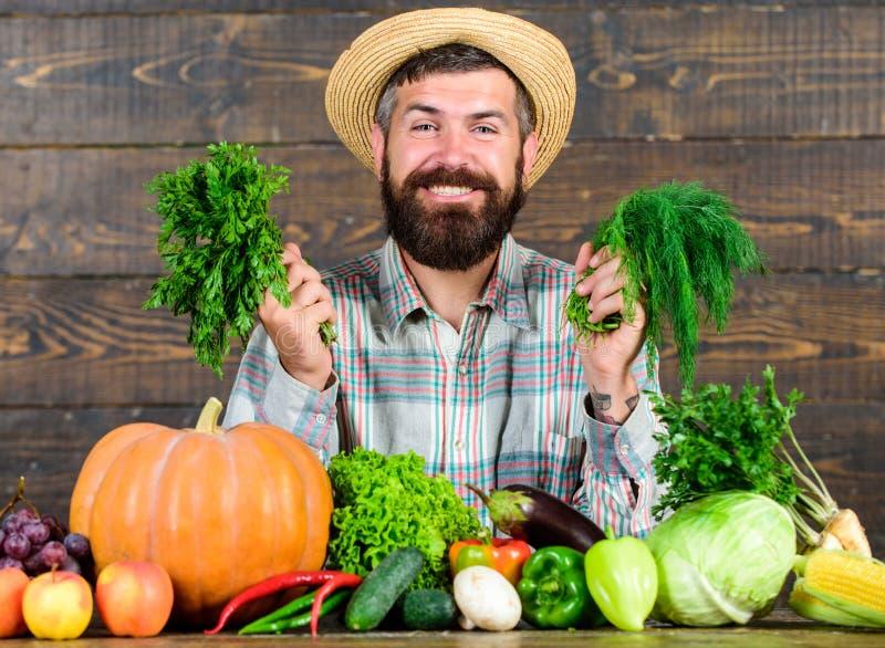 Organische Ongediertebestrijding Mens met baard trots van zijn oogst houten achtergrond Uitstekende Organische kwaliteitsoogst stock foto