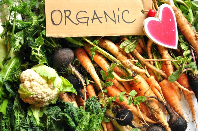 Organische groenten zwarte rapen, bloemkool, wortelen, boerenkool stock afbeelding