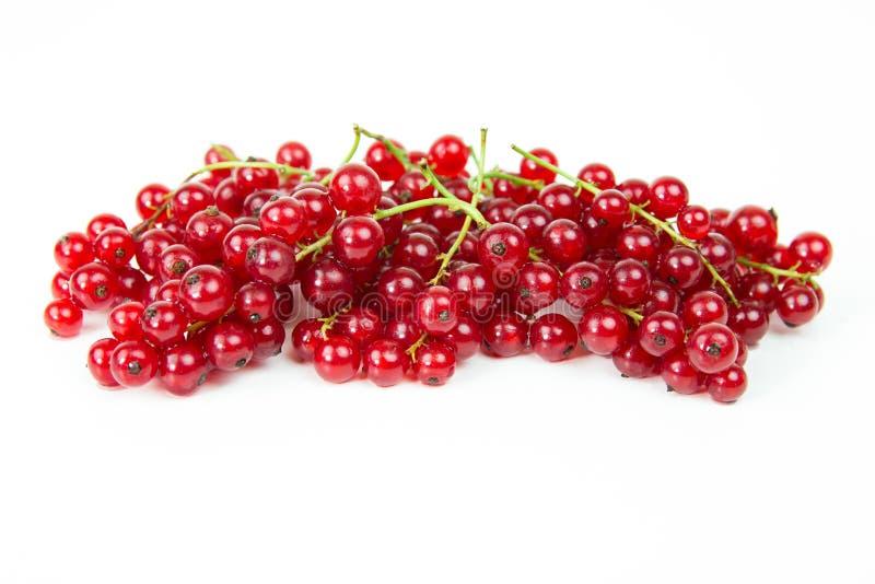 Download Organische Rote Johannisbeere Stockbild - Bild von saftig, blatt: 96927369