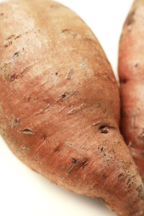 Organische süße Kartoffel lizenzfreies stockfoto