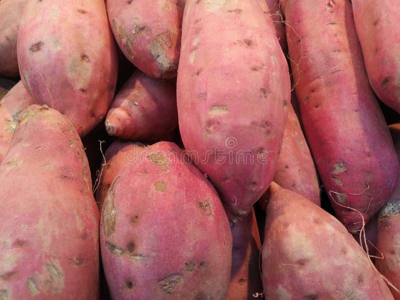 Organische süße Kartoffeln stockbilder