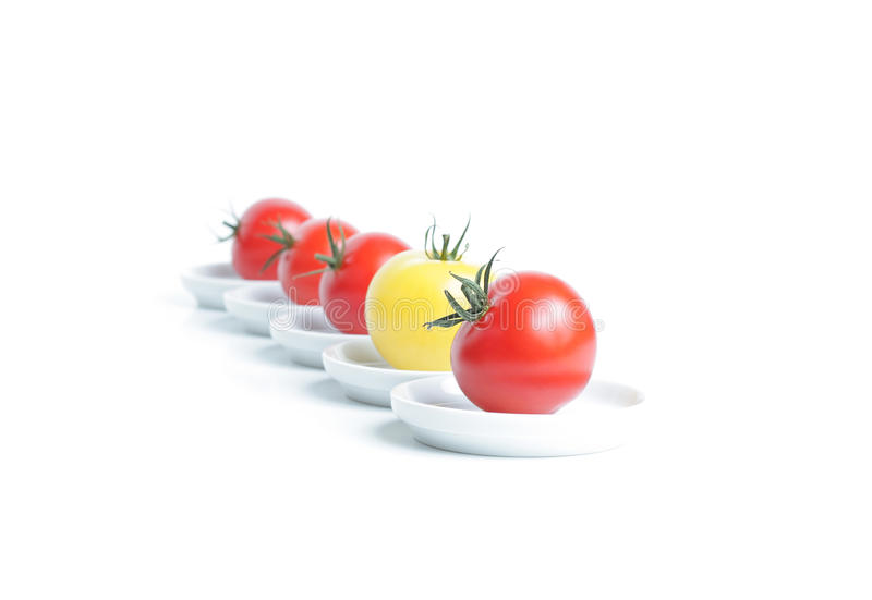 Organische Tomate fünf stockbilder