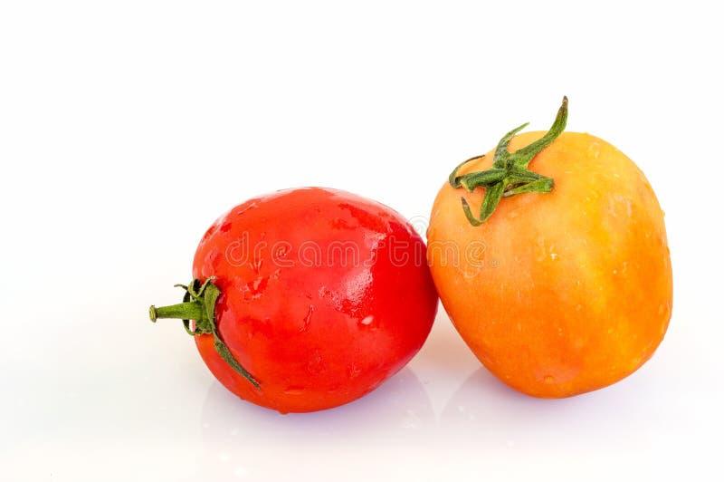 Organische Tomaten auf einem weißen Hintergrund lizenzfreies stockbild