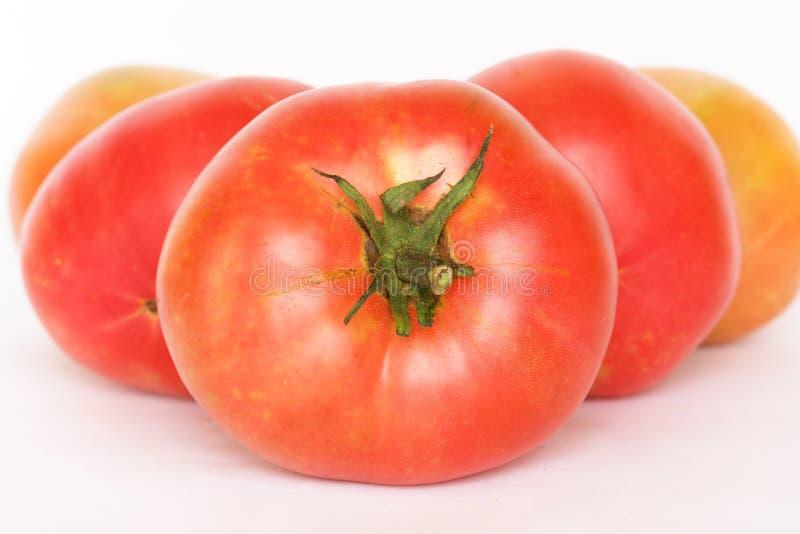 Organische Tomaten - getrennt lizenzfreies stockbild