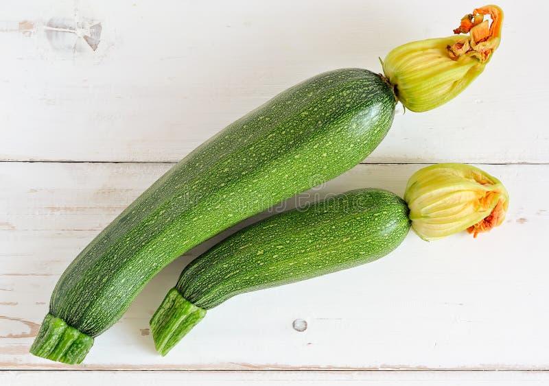 Organische Zucchini lizenzfreie stockfotografie