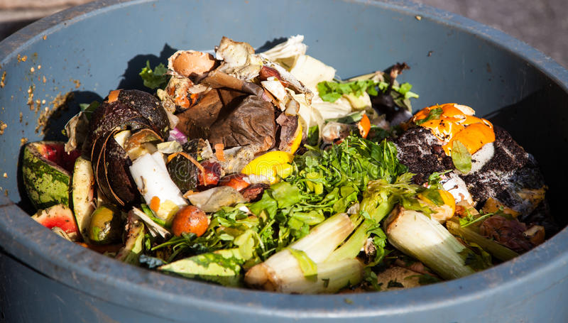Organischer Abfall lizenzfreies stockbild