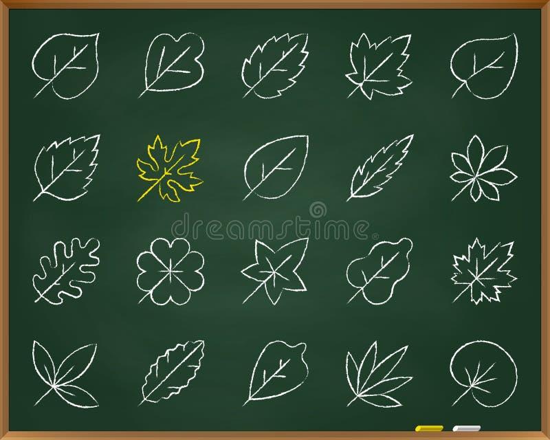 Organischer Blattkreidezugseilikonen-Vektorsatz lizenzfreie abbildung