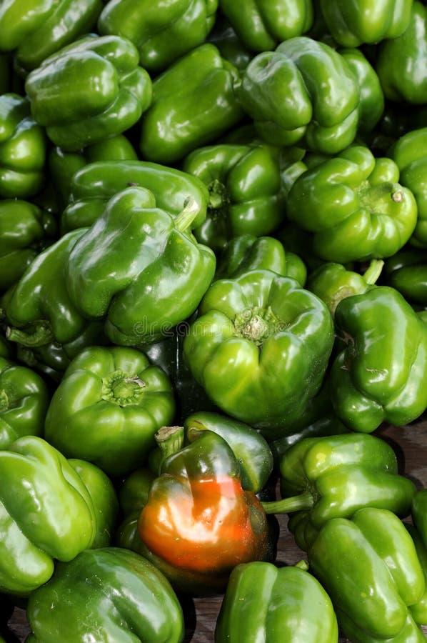 Organischer grüner grüner Pfeffer stockfoto