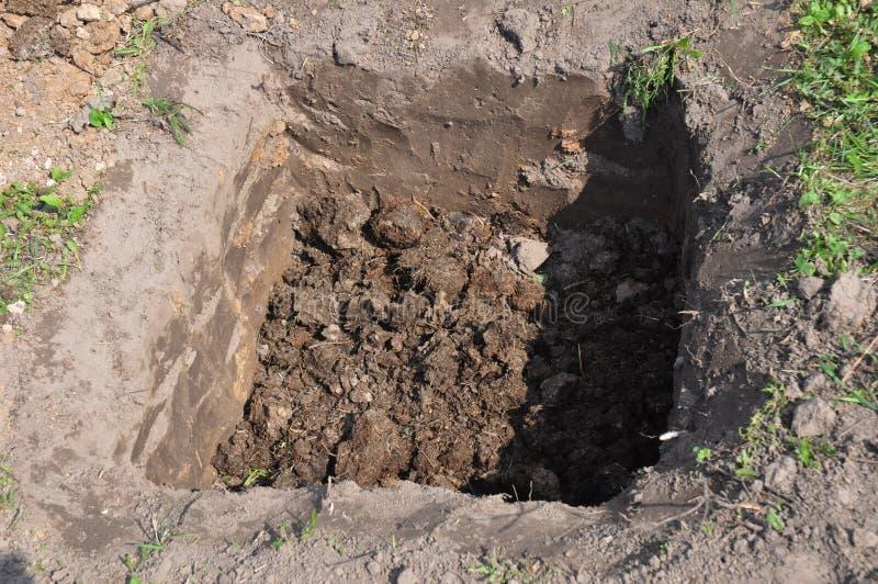 Organischer Kompost D?ngung des Baums in grabendem Loch stockbild