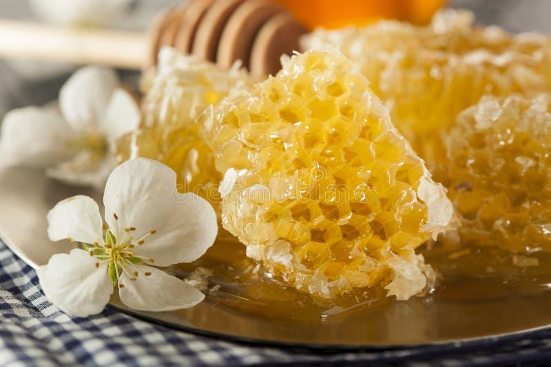Organischer roher goldener Honey Comb stockfotos