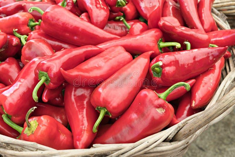 Organischer roter Pfeffer auf Landwirtmarkt stockbild