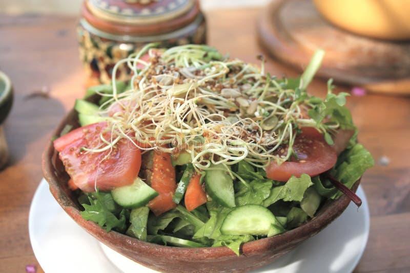 Organischer Salat lizenzfreie stockbilder