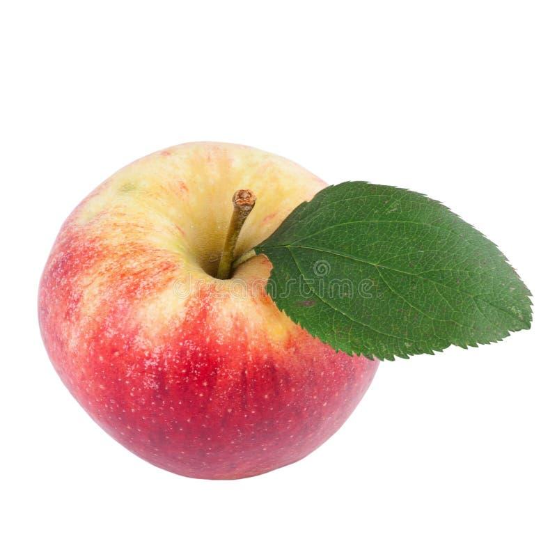 Organisches Apple über Weiß stockfoto