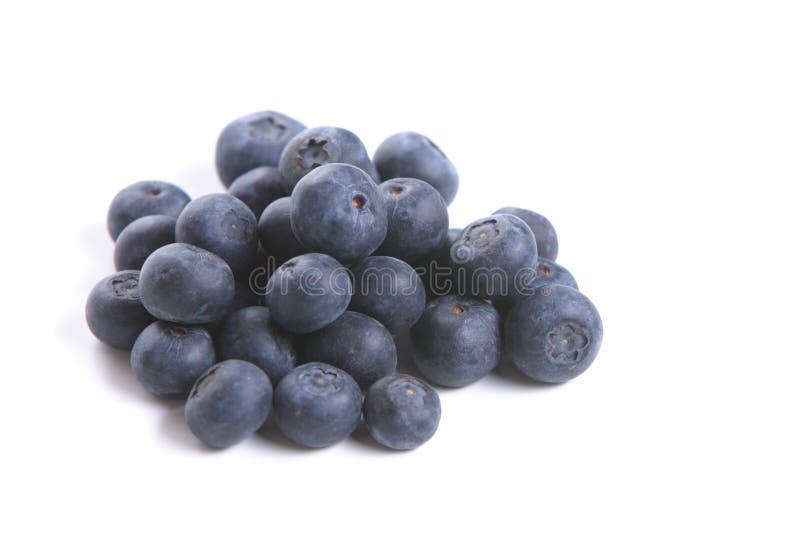 Organisches Blueberrys stockbilder