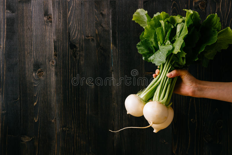 Organisches Gemüse Hände, die frische Rübe halten Schwarzer hölzerner Hintergrund mit Kopienraum stockfotografie