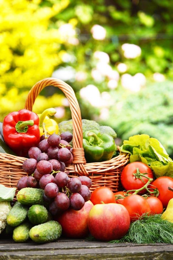 Organisches Gemüse im Weidenkorb im Garten lizenzfreies stockbild